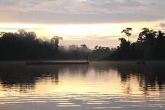 "Tronco en el lago • <a style=""font-size:0.8em;"" href=""http://www.flickr.com/photos/78328875@N05/25670445994/"" target=""_blank"">View on Flickr</a>"