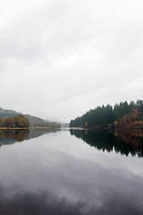 Mirror still water (AJL0610) Tags: scotland unitedkingdom lochard