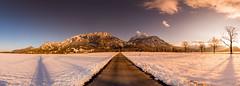 panorama20160306 (allgaeubilder) Tags: winter bayern neuschwanstein mrz schlossneuschwanstein allgu winterlandschaft schwangau 2016 ostallgu