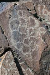 Petroglyphs / Blackrock Well Site (Ron Wolf) Tags: california archaeology nationalpark nativeamerican petroglyph polygon anthropology shoshone rockart deathvalleynationalpark numic clusteredpolygons