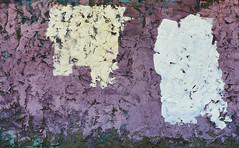 Nostalgia (jaxxon) Tags: urban abstract macro texture wall lens prime nikon paint painted grunge surface plaster adobe micro vandalism damage fixed abstraction 28 nikkor peelingpaint distressed f28 vr afs 105mm 2016 105mmf28 d610 f28g jaxxon 105mmf28gvrmicro nikkor105mmf28gvrmicro nikon105mmf28gvrmicro jacksoncarson nikond610