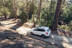 Forester in a Forest (mnlphotography) Tags: travel nature forest canon xt offroad exploring tokina adventure subaru awd offroading forester 7dii