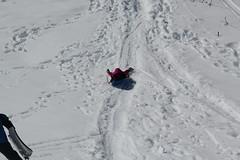 Jovie sledding (Aggiewelshes) Tags: travel winter snow april snowshoeing wyoming jacksonhole grandtetonnationalpark 2016 gtnp taggartlaketrail