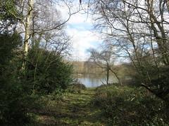 Vale of Health Pond, Hampstead (John Steedman) Tags: uk greatbritain england london pond unitedkingdom hampstead valeofhealth grossbritannien     grandebretagne     valeofhealthpond