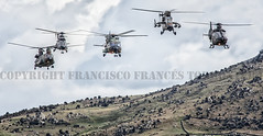 COPYRIGHT FRANCISCO FRANCS TORRONTERA (27) (OROEL (Francisco Francs Torrontera)) Tags: chopper tiger huey helicopter spanish helicopters chinook cougar tigre eurocopter ec135 ch47 ejrcitodetierra uh1 as532 attackhelicopter cargohelicopter ec665tigre ejrcitoespaol uh1h ch47d uh1huey spanisharmy ch47chinook fuerzasarmadasespaolas famet as532cougar ec665 helicoptercrew heavyhelicopter tigrehap spanisharmyhelicopter cougaral ha28hap fuerzasaeromvilesdelejrcitodetierra tigerhap airbushelicopter