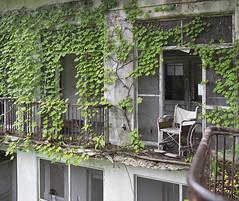NJ TB Hospital (Jonnie Lynn Lace) Tags: abandoned ruins decay peelingpaint derelict decayed decaying modernruins naturetakesover abandonednj abandonedamerica