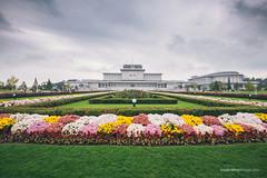 Kumsusan Palace of the Sun (reubenteo) Tags: city democracy scenery war communist communism kimjongil socialist metropolis socialism northkorea pyongyang dprk reunification kimilsung kimjongun