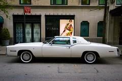 DSC_0029 (2) (mickamaouche) Tags: cars modern vintage eldorado contraste mustang prada brands vintagecars