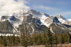 _1190304.jpg (Bucky-D) Tags: ca canada mountains rockies alberta banff banffnationalpark canadianrockies fz1000