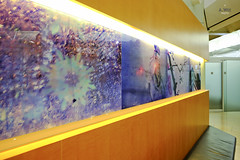 Artwork at the foyer (A. Wee) Tags: china hongkong airport united lounge  airlines  foyer hkg hkia  unitedclub