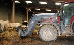 Case iH Farmall 105 u pro + Quicke Q56 (Philippe-03) Tags: case agriculture tractors tracteur ih caseih quicke