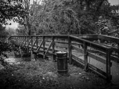 UK - Scotland - Luss (Marcial Bernabeu) Tags: uk bridge rain puente lluvia unitedkingdom united kingdom raining bernabeu reino unido reinounido luss marcial bernabu granbretaa