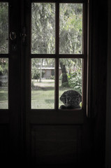 Esperando la comida (facundoroca) Tags: food dog window ventana puerta nikon waiting labrador comida perro cordoba mirada esperando argetina d5100