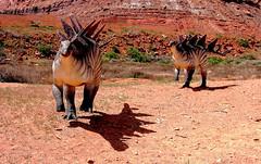 Charging Stegosauruses (Jay Costello) Tags: utah ut dinosaur paleontology moab plates geology spines stegosaurus jurassic paleosafari