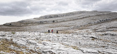 The Burren County Clare Ireland 24th April 2016 (loose_grip_99) Tags: county ireland landscape scenery rocks clare limestone april burren karst topography 2016 carboniferous almostanything