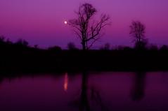Talking to the moon  ... mOooooOn ... (mariola aga) Tags: autumn trees light sunset sky moon lake reflection fall silhouette evening purple dusk fullmoon moonlight serene hue