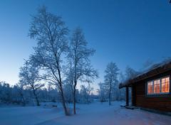 Frozen afternoon at Glåmos, - 27 degrees centigrade (harald.bohn) Tags: blue winter sky cold norway norge frozen vinter cabin frost afternoon himmel bluehour rim sørtrøndelag blåtimen hytte blå icecold blåtime glåmos vinterhimmel kalct
