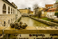 Monsters' love story (chinasky1975) Tags: bridge building rio river skulls puente downtown dragon cloudy amor slovenia ljubljana nublado eslovenia dragn padlocks barandilla enamorados shelfish dragones candados lovebridge ljubjanica butchersbridge dragonskulls