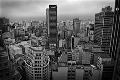 Sao Paulo (elzauer) Tags: city brazil brasil architecture modern skyscraper outdoors day cityscape saopaulo sopaulo horizon citylife nopeople sampa development crowded urbanskyline capitalcities traveldestinations sopaulostate buildingexterior highangleview