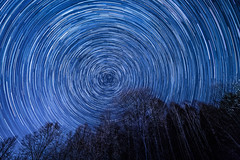 Stars above the trees (boxxbeidl.de) Tags: trees night stars forrest nacht wald bume startrails sterne langzeitbelichtung longtimeexposure clearskies sternenspuren