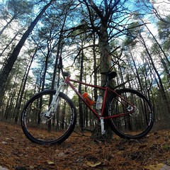 Another pic from Sunday's pines exploration. I miss 65 and sunny!  #weavercycleworks #custombicycle #steelisreal #ridethepines