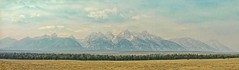 HALF WAY TO HEAVEN (Irene2727) Tags: trees mountains clouds nationalpark fields wyoming tetons majestic mountainscape landscapenature