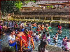 Holy spring 2 (Bruno Zaffoni) Tags: bali indonesia tirta empul