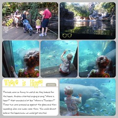 Hippos at Animal Kingdom (I love the story with this one!) LOAD216 (scrapping PT) Tags: load216