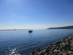 Shelter Island (Anna Sunny Day) Tags: sandiego shelterisland sandiegobay