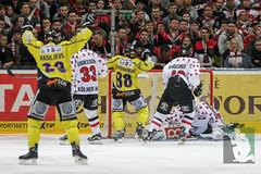 "DEL16 Kölner Haie vs. Krefeld Pinguine 17.01.2016 094.jpg • <a style=""font-size:0.8em;"" href=""http://www.flickr.com/photos/64442770@N03/24844350381/"" target=""_blank"">View on Flickr</a>"