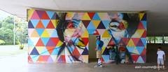 Brsil 2016 SP Graffitis (CZNT Photos) Tags: streetart brasil saopaulo graff brsil artmural alaincouzinet cznt