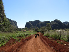 "Parc National de Viñales <a style=""margin-left:10px; font-size:0.8em;"" href=""http://www.flickr.com/photos/127723101@N04/25059389359/"" target=""_blank"">@flickr</a>"