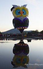 Owlbert Eyenstein - Owl Balloon at the Canberra Balloon Spectacular (Anna Calvert Photography) Tags: people water festival reflections balloons outdoors flying aviation australia owl canberra owlballoon canberraballoonspectacular owlberteyenstein