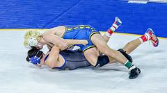 2016 CIF Quarters (jrsachs) Tags: california wrestling championships cif techfallcom johnsachsphotographer