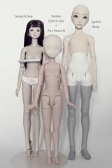 Manju comparison (customlovers) Tags: doll bjd 16 dollfie abjd manju sekiguchi unoa azone pureneemo apodoll