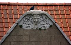Kaaskerke, West-Vlaanderen, house front details (groenling) Tags: house face stone belgium belgi stonecarving carving westvlaanderen be huis grotesque greenman steen flanders gezicht kaaskerke