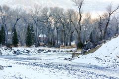 Cabins on The South Fork (wyojones) Tags: trees winter snow river rocks valley wyoming np cody spruce cottonwoods cabins shoshonenationalforest wyojones southforkoftheshoshone