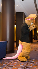 DSC_3363 (Acrufox) Tags: midwest furfest 2014 furry convention december hyatt regency ohare rosemont chicago illinois acrufox fursuit fursuiting mff2014