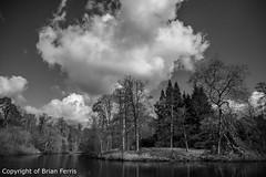 IMGP1096 (acornuser) Tags: park trees blackandwhite bw reflection water woodland garden landscape waterfall spring surrey cascade virginiawater blosom sigma1770 pentaxk3