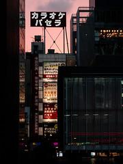 Akiba Passage (H.H. Mahal Alysheba) Tags: city japan architecture lumix tokyo twilight dusk snapshot akihabara akiba elmarit 45mmf28 gx7 leicadg