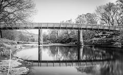 The River Tees . Newbiggin . (wayman2011) Tags: uk reflections bridges rivers canon5d dales pennines lightroom countydurham longexposures teesdale rivertees newbiggin bwlandscapes bw110 wayman2011