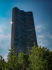 B0001396.jpg (art_photo) Tags: chicago lakeshoredrive