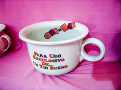 Museo del Orinal  Chamber Pot Museum (ipomar47) Tags: espaa museum spain pot chamber museo piss thunder potty orinal ciudadrodrigo ciudad