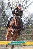 038P_456 (Lukas Krajicek) Tags: czechrepublic kon zeo koně humpolec parkur vysocinaregion michaelakadlecová