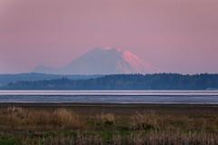 Alpenglow (mfeingol) Tags: sunset washington mountrainier skagit mountvernon alpenglow skagitcounty skagitflats