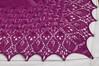 _DSC1228 (KateSi) Tags: shawl fuschia knitty laminaria shoulderette pink scialle chal châle sjal rosa rose rosado tejer