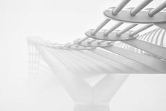 bridge (Giles McGarry (formerly kantryla)) Tags: bridge blackandwhite london monochrome fog mono millenium highkey foglondon