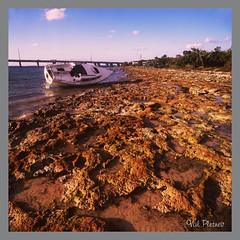 Tide out (Valeri Pletnev) Tags: ocean bridge sunset sea sky sun tree 6x6 film clouds honda landscape island boat florida marathon palm bronica reef 120mm tideout waterscape sqai oceanscape bohia
