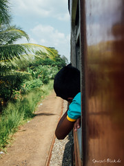 Wind in the hair (Ineound) Tags: travelling train pen lite four lumix olympus panasonic micro srilanka pancake 20mm asph colombo thirds f17 m43 mft spiegelblick microfourthirds 43 20mmf17 lumix20mmf17 hh020e spiegelblickde epl3 h020e