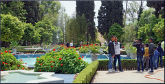 Jardin Jnane Sbil (mhobl) Tags: fountain photographer springbrunnen jardin morocco maroc fes hingebrselt jardinjnanesbil